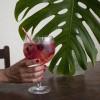 Gin Tónico de Frutos Silvestres
